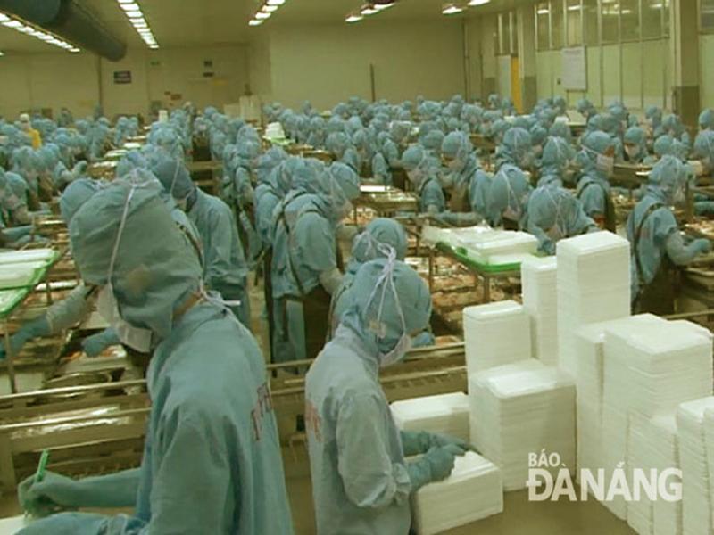 nguyên liệu tôm, nuôi tôm sạch, tôm sạch, tôm công nghiệp, doanh nghiệp xuất khẩu, xuất khẩu tôm
