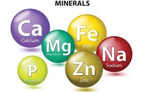 khoáng trong nuôi tôm, những khoáng chất quan trọng trong nuôi tôm, bổ sung khoáng hiệu quả cho tôm