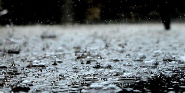 mưa, ảnh hưởng mưa đến tôm, nuôi tôm, thông số môi trường ao nuôi