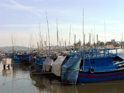 Tàu thuyền chen chúc neo đậu tại cảng cá Tam Quan