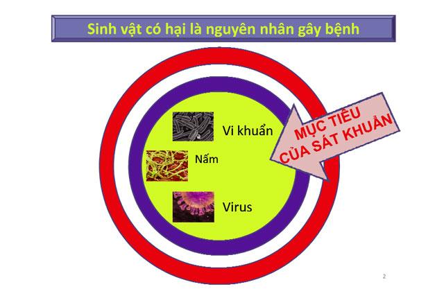 tiêu chí lựa chọn sát khuẩn, sát khuẩn trong nuôi tôm, nuôi tôm, tôm, diệt khuẩn cho tôm