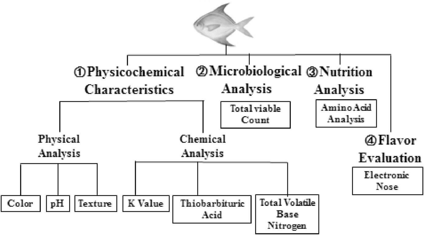 Ứng dụng thảo mộc bảo quản cá, bảo quản cá bằng thảo mộc, bảo quản cá
