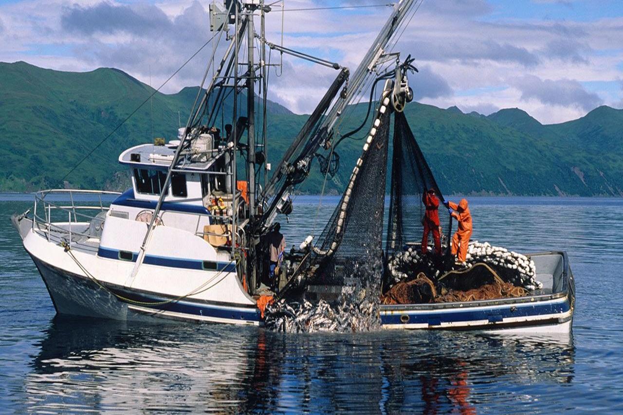 Tác động của Quy định IUU của EU về luồng thương mại thủy sản