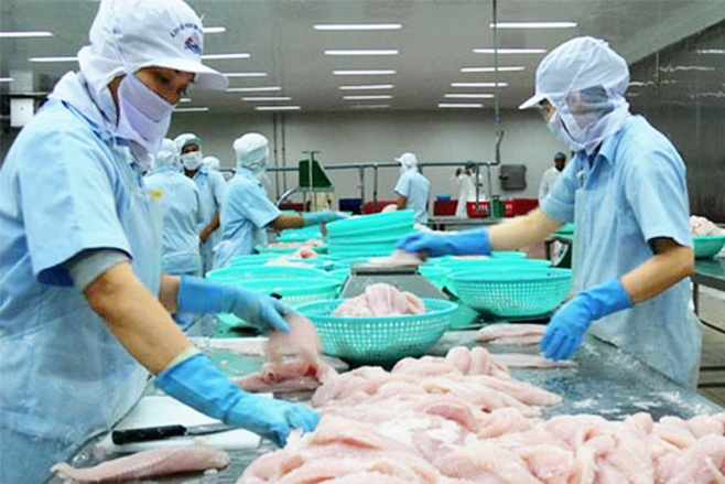 VASEP kiến nghị về việc kiểm soát chất lượng cá tra sang Trung Quốc
