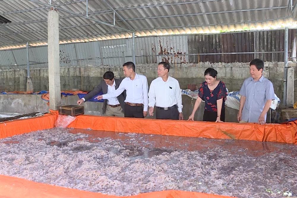 Thành công từ nghề chế biến hải sản