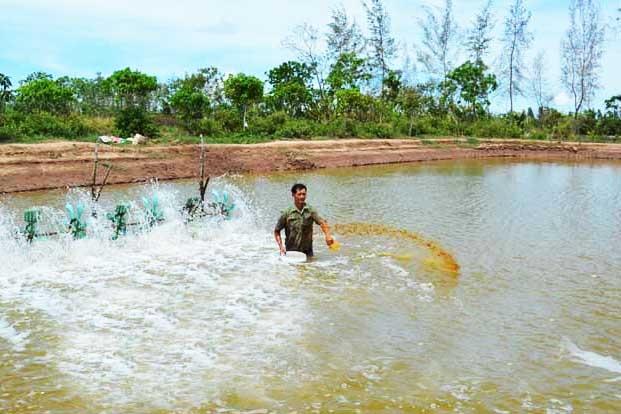 Nâng cao trách nhiệm bảo vệ môi trường trong nuôi trồng thủy sản