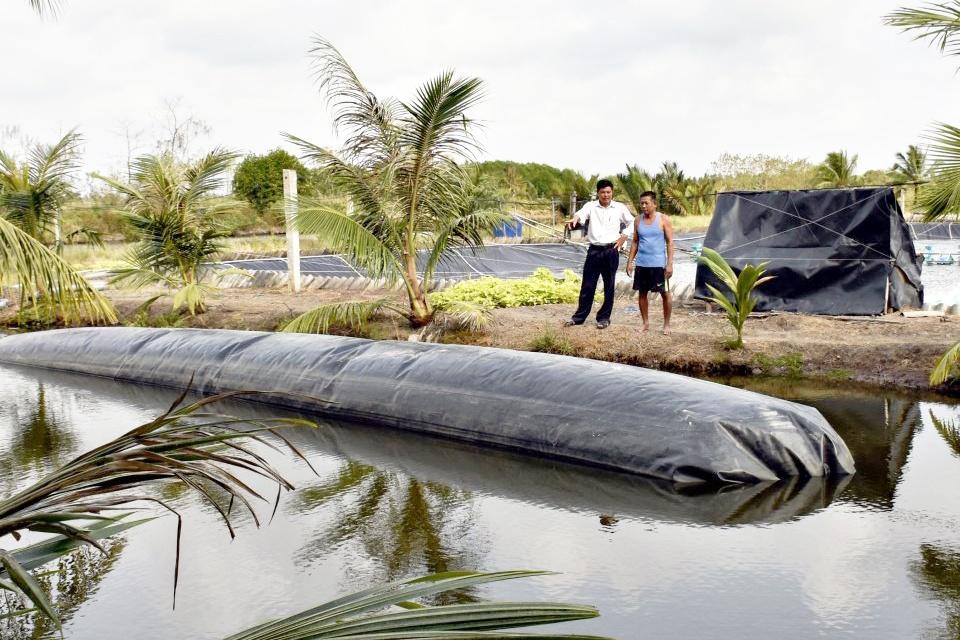 Ứng dụng biogas xử lý chất thải tôm nuôi siêu thâm canh