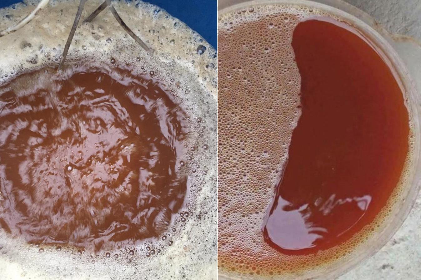 Kinh nghiệm sử dụng chế phẩm sinh học trong nuôi tôm