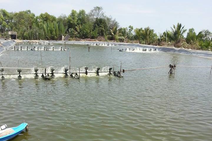 Trà Vinh: Đưa lĩnh vực thủy sản trở thành lĩnh vực tạo đột phá