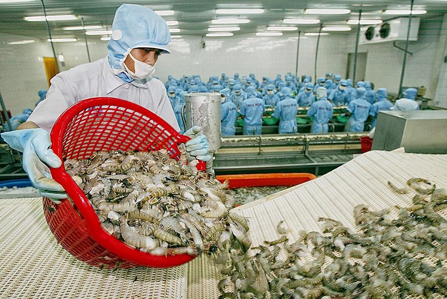"""Xuất khẩu khởi sắc nhiều doanh nghiệp thủy sản """"bùng nổ"""" lợi nhuận"""