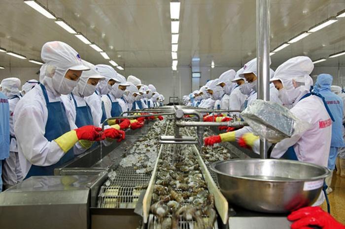 Hoa Kỳ giảm thuế chống bán phá cho tôm Việt Nam trong POR12