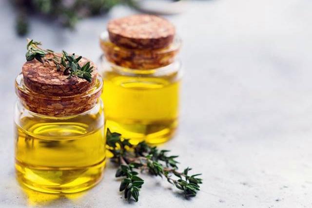 Cỏ xạ hương – thảo dược quý cho tôm