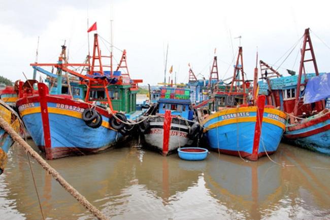 Hơn nghìn tàu cá ở Bà Rịa - Vũng Tàu nằm bờ vì thua lỗ