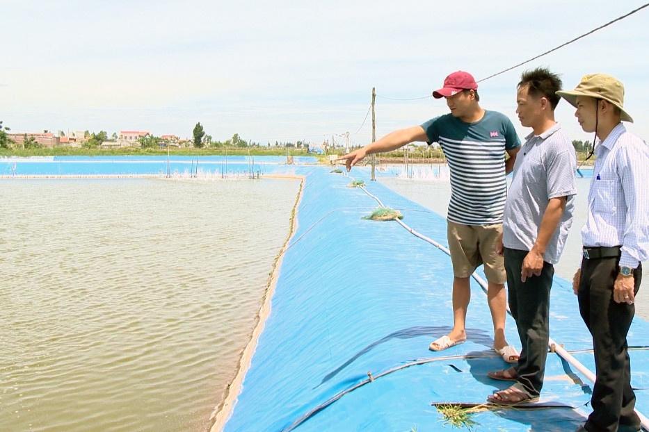 Mô hình hợp tác xã nuôi trồng thủy sản ở Ninh Bình