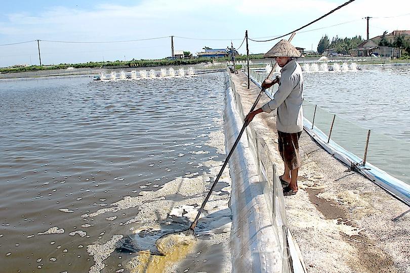 Giải pháp kỹ thuật cải tạo nguồn nước trong nuôi thủy sản