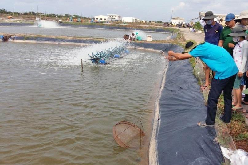 Giải pháp nuôi thủy sản trong điều kiện biến đổi khí hậu