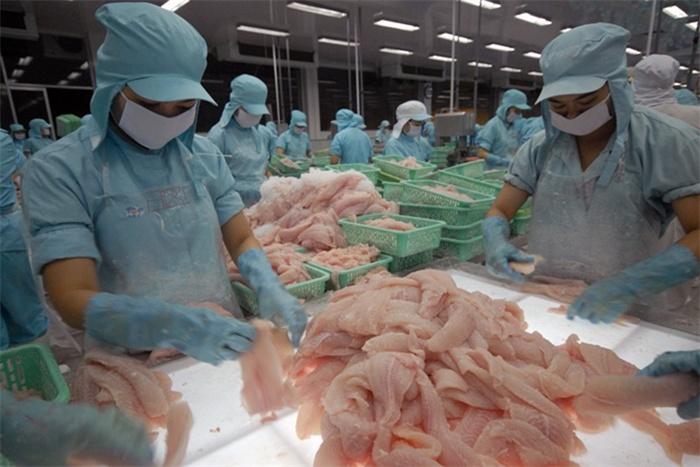 Khơi thông lại thị trường Arab Saudi cho cá tra Việt Nam