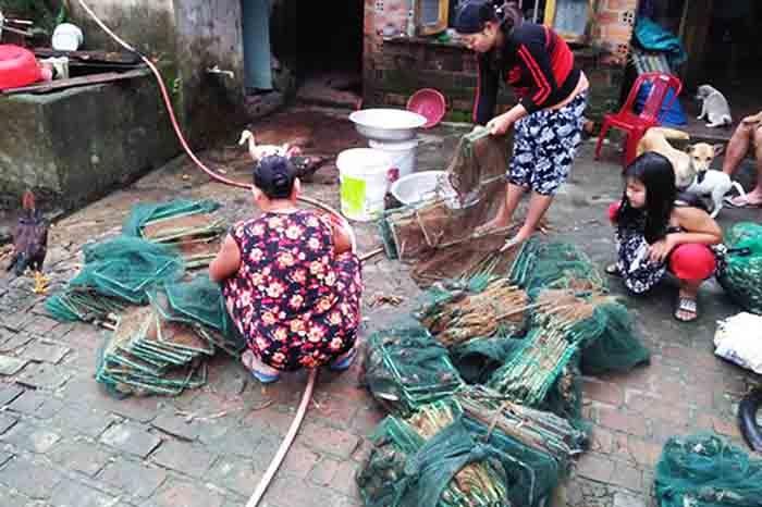 Quảng Nam: Được mùa cua đồng