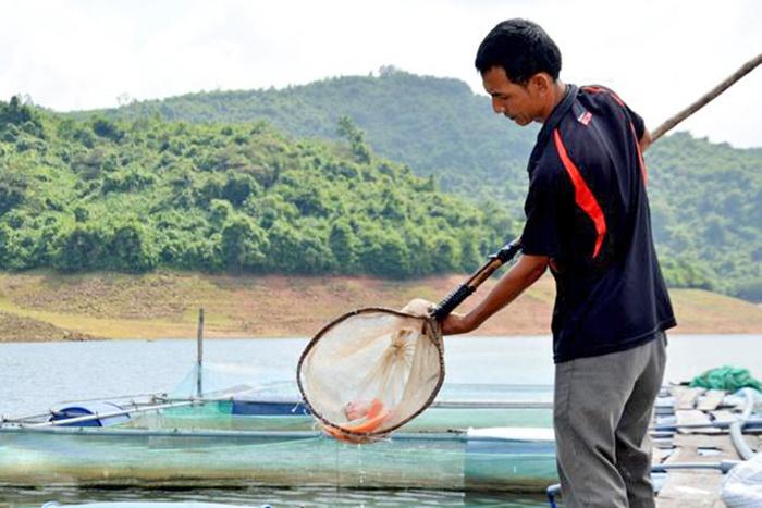 Xây dựng sản phẩm địa phương từ cá nuôi ở hồ Liệt Sơn