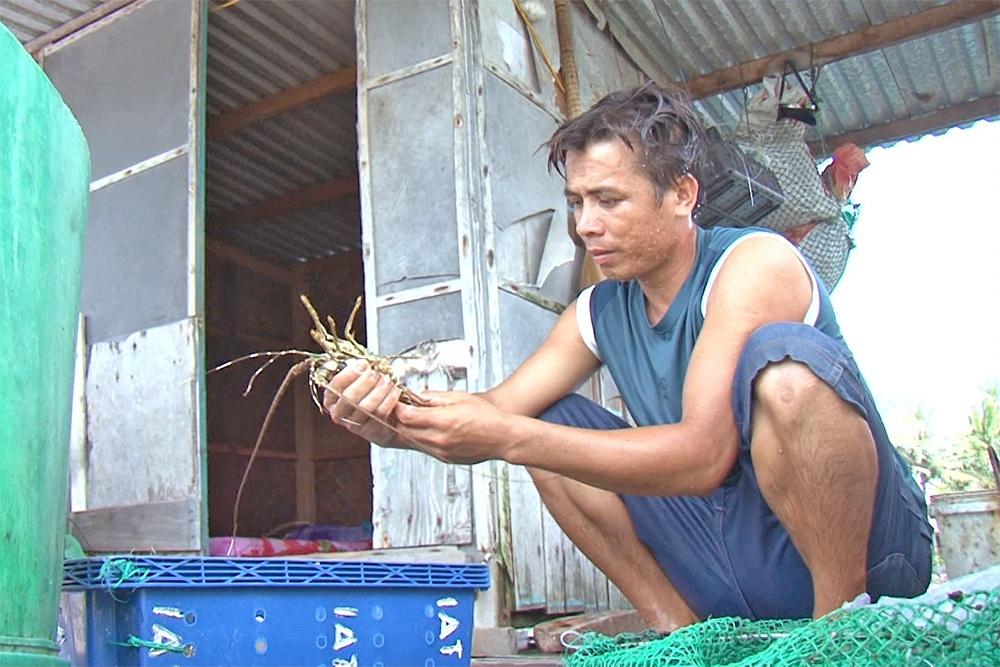 Mưa lũ làm nuôi trồng thủy sản Cam Ranh thiệt hại hơn 101 tỷ đồng