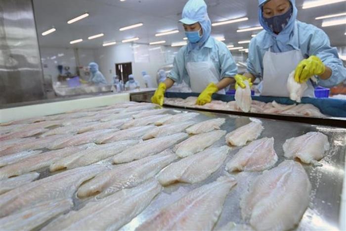 Xuất khẩu cá tra Việt Nam năm 2018 đạt 2,26 tỷ USD