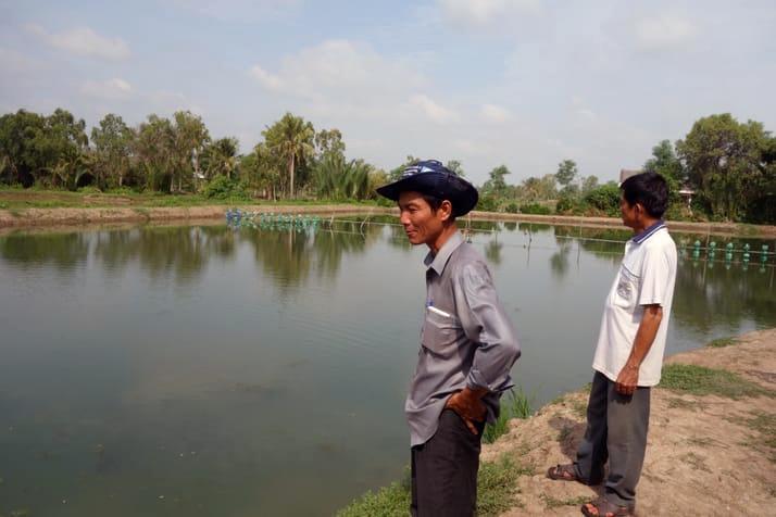 Ao dinh dưỡng - Hệ thống nuôi mới giảm chi phí nuôi tôm cá