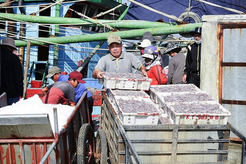 Khai thác đi đôi với bảo vệ nguồn lợi thủy sản