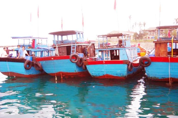 Quãng Ngãi: Tăng cường kiểm định tàu cá