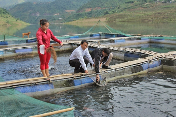 Mường Tè - Lai Châu: phát triển nghề nuôi trồng thủy sản