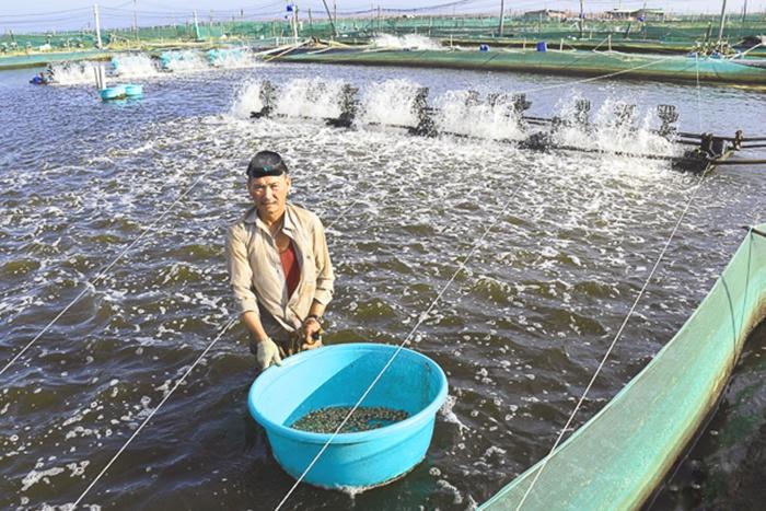 Nuôi trồng thủy sản hướng đến mục tiêu bền vững