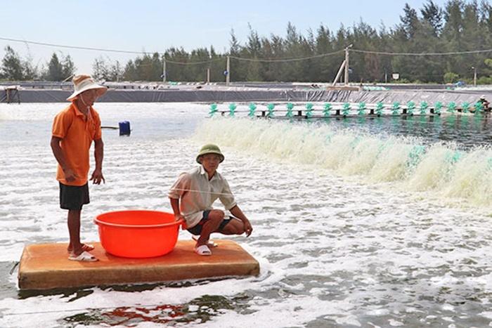 """Tạo """"cú hích"""" để phát triển kinh tế thủy sản Hà Tĩnh"""