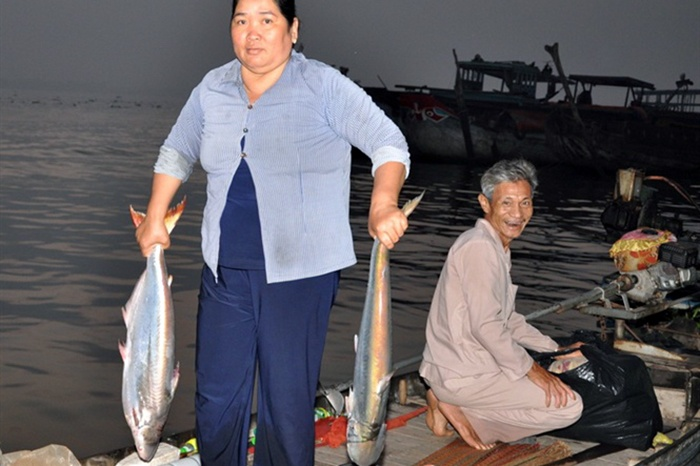 Cá bông lau được giá
