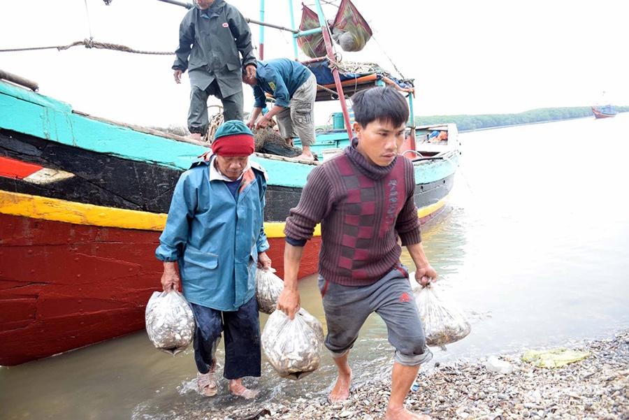 Ngư dân Lạch Vạn đem về hơn 10 tấn tôm sau chuyến biển đầu năm