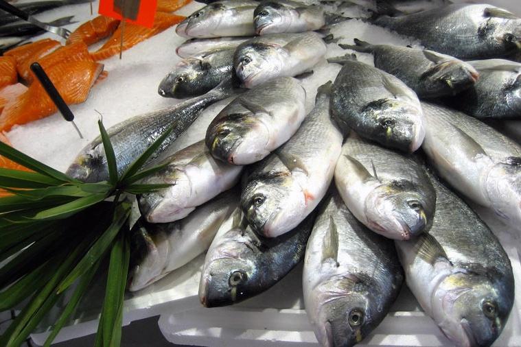 Nhiều người tiêu dùng Mỹ không mua thủy sản vì thiếu thông tin sản phẩm