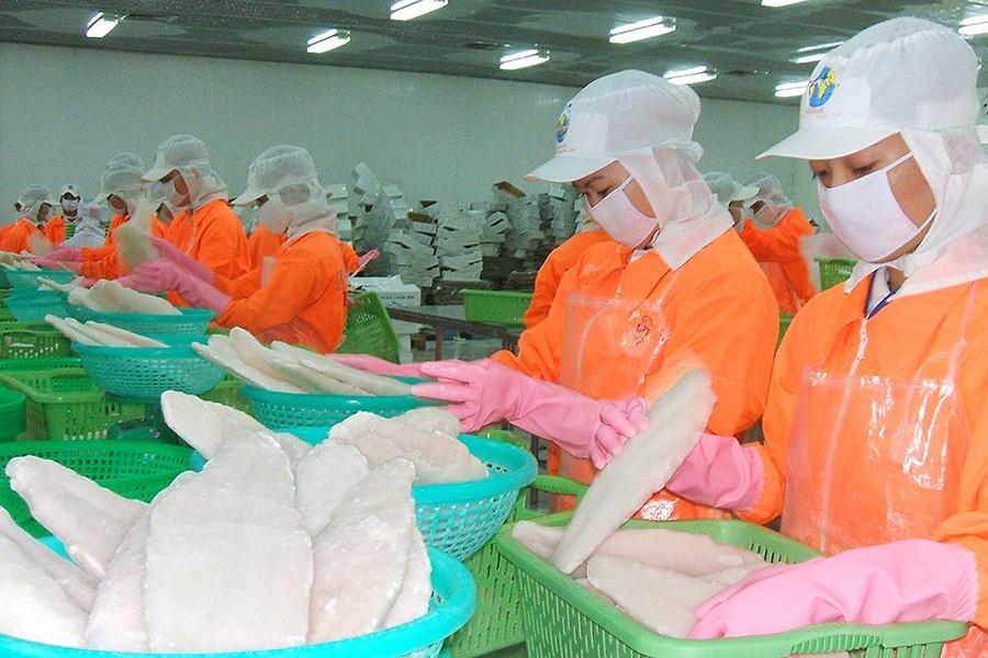 Thêm cơ hội lớn cho cá tra Việt Nam xuất khẩu vào Mỹ
