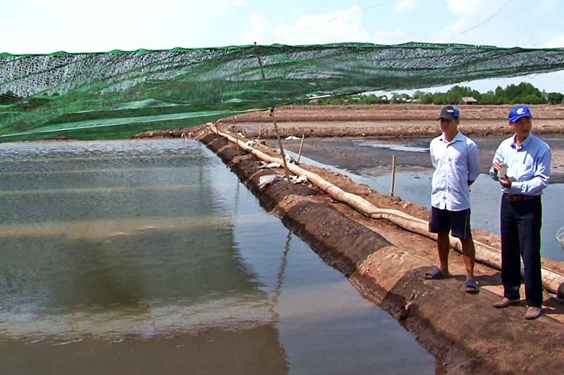 Lưới che nắng - Giải pháp nuôi artemia mùa nắng