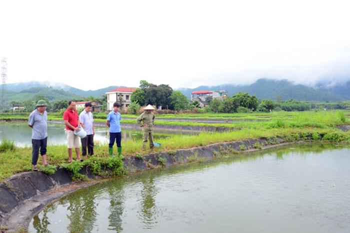 Tuyên Quang: Đẩy mạnh chuỗi liên kết sản xuất thủy sản