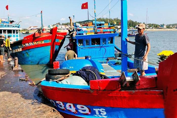 Áp lực vụ cá Nam