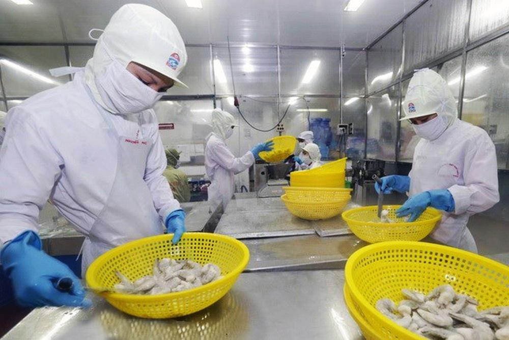 Xuất khẩu tôm Việt Nam: Những lợi thế cạnh tranh
