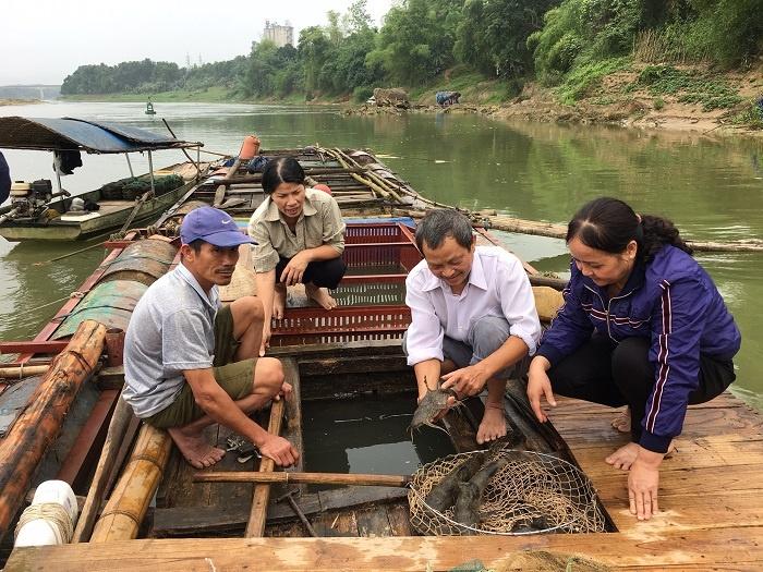 Chăm sóc và quản lý đàn cá nuôi mùa nắng nóng