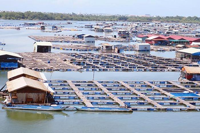 Tăng cường chỉ đạo phát triển nuôi trồng thủy sản năm 2019