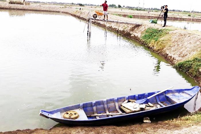 Triển vọng liên kết sản xuất từ cá rô phi ở Thạnh Phú