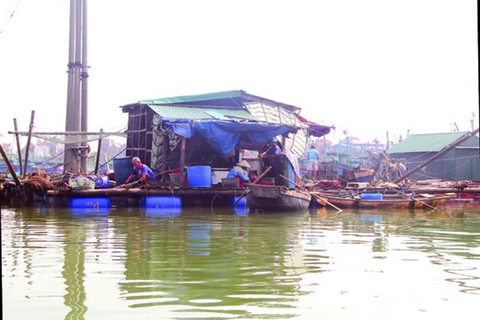 Nuôi trồng thủy sản ồ ạt – tiềm ẩn nhiều rủi ro
