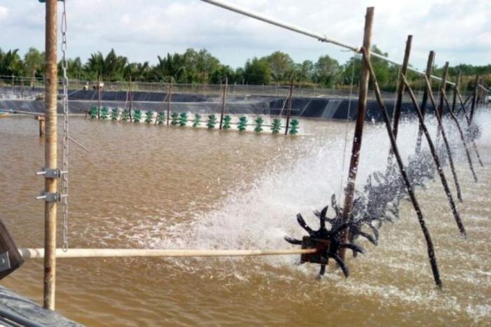 Kết quả quan trắc môi trường nuôi thủy sản TP HCM tháng 5