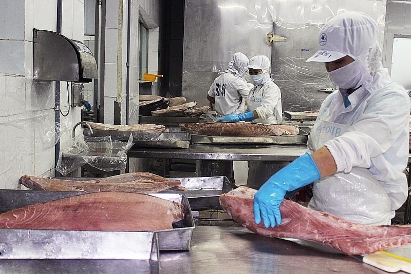 Thủy sản xuất sang Trung Quốc bị ảnh hưởng vì nhân dân tệ mất giá