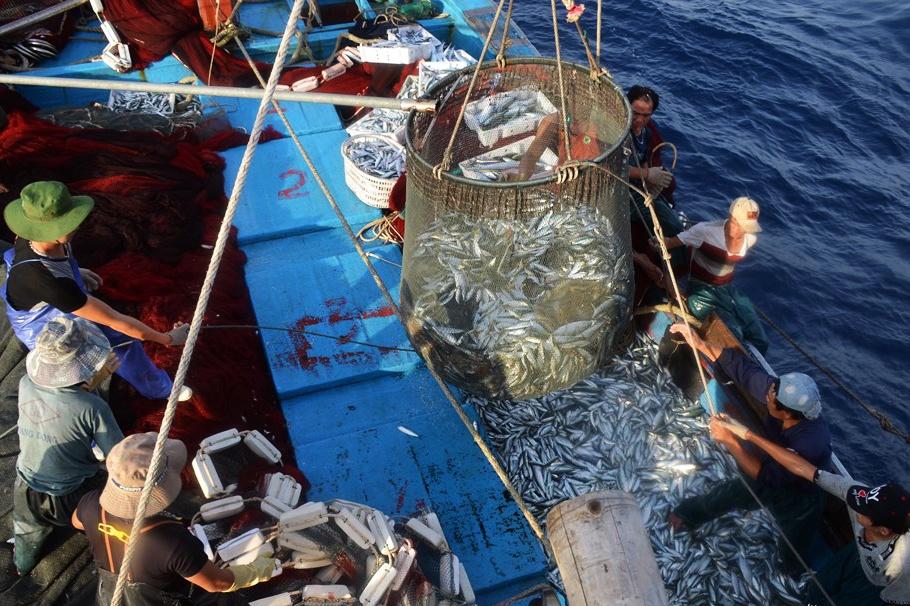 Mức phạt vi phạm quy định về Hạn ngạch và giấy phép khai thác thủy sản