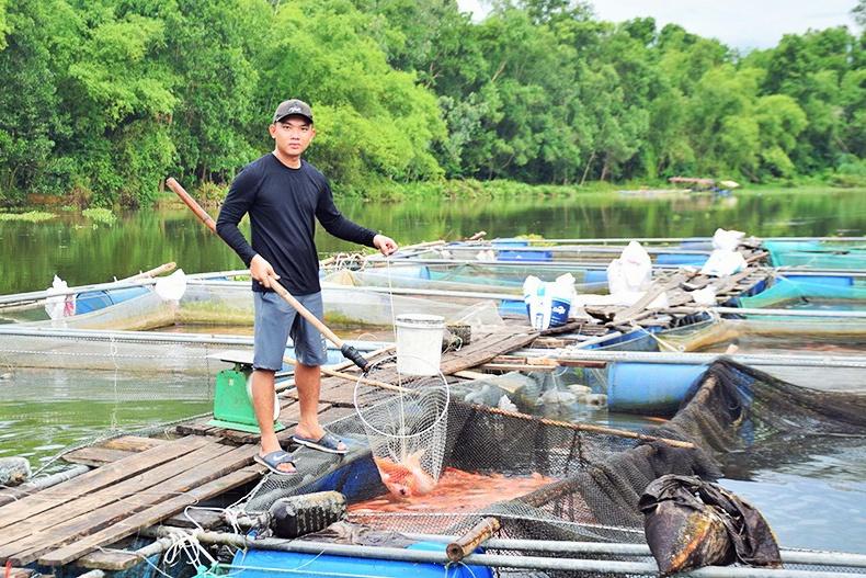 Quảng Nam: Giải pháp hướng đến nuôi trồng thủy sản bền vững