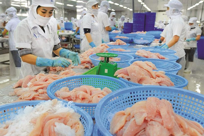 Yếu tố quyết định cho sự phát triển ngành cá tra