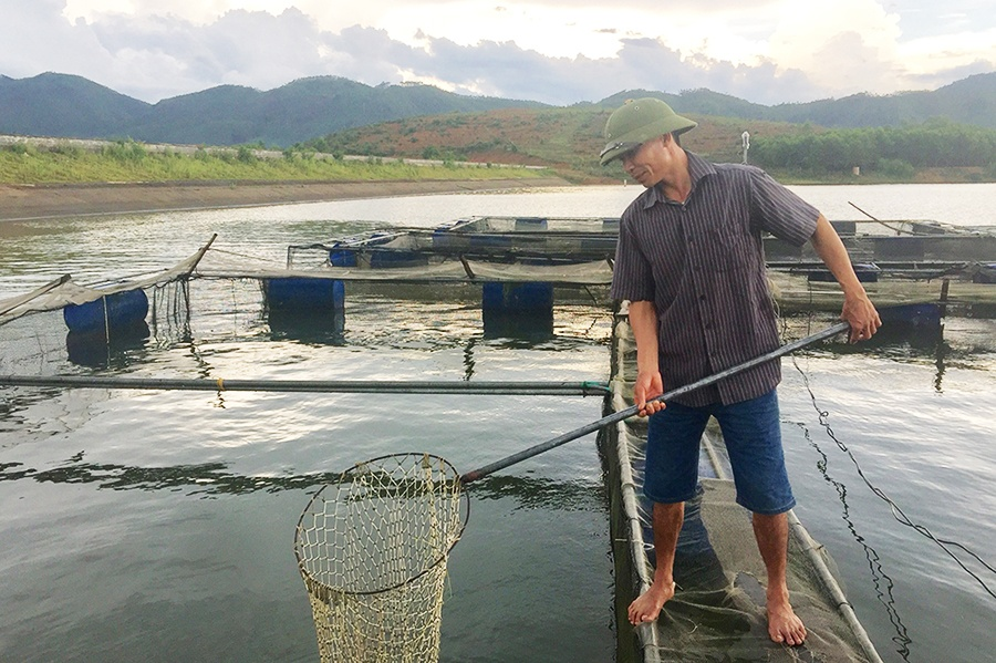 Nghề nuôi cá lồng trên hồ thủy lợi Phượng Mao