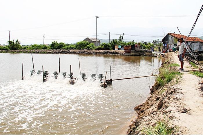 Chủ động kiểm soát nguồn nước nuôi thủy sản